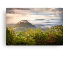 Looking Glass Rock at Sunrise w/ Fog - Blue Ridge Parkway Canvas Print