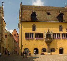 Regensburg Altes Rathaus by Béla Török