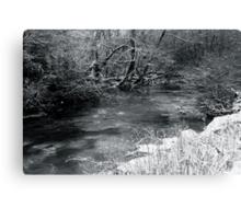 2010 river martin blarney Canvas Print
