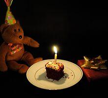 The Teddybear's 1st  Birthday by laruecherie