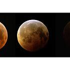 Lunar Eclipse, December 21, 2010  by FlyingWildcat
