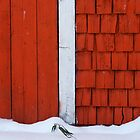 Barn Door by Roxanne Persson