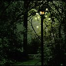 Fairies in the Park by C. Michael Cox
