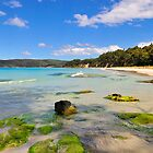 Summer Adventure, Bruny Island, Tasmania by bevanimage