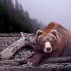 Some Days You Eat The Bear Some Days The Bear Eats You by Randall Nyhof