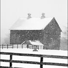 Barn in a Snowstorm by Randall Nyhof