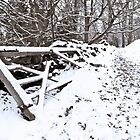 Fence in the Snow by Nando MacHado