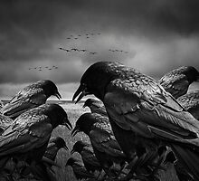 Nothing to Crow About by Randall Nyhof
