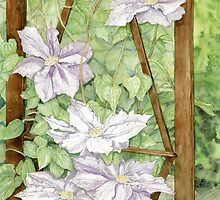 Clematis on Trellis by clotheslineart
