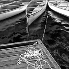 Whistler Canoes 0970 BW by Randall Nyhof