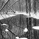 Winter Stream 057 BW Vertical by Randall Nyhof