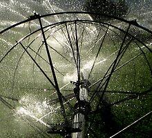 Sprinklers - Modern by Carin Fausett