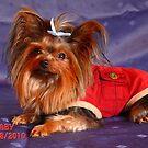 Baby's Christmas Attire ll by Gail Bridger