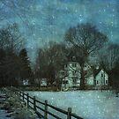 ~...winter moonlight... by Narcisa Eichin