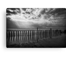Beach Spectacle Canvas Print