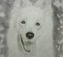 White Swiss Shepherd by Istvan froghunter