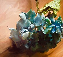 Hydrangea on the Hardwood Floor by Sarah Butcher