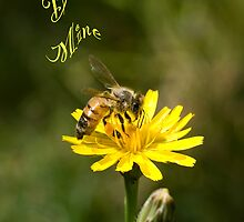 Bee Mine by Maree Toogood