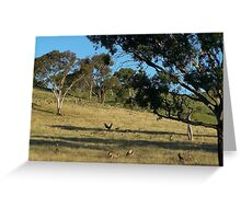 Just before dusk, south of Cook in Canberra.- Australia. Greeting Card