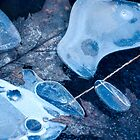 Composition in cold and blue by Susana Weber