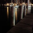 Miami Marina at Night 2 by Janis Lee Colon
