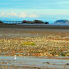 Birnbeck Pier and Steep Holm Island by trish725