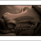Rocking Horse Head by DuncanAllan