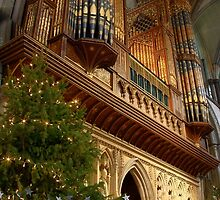Rochester Cathedral Organ by Dave Godden