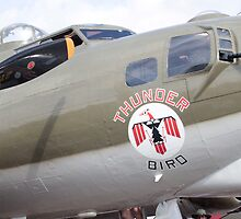 B-17 Bomber Mascot by SuddenJim