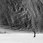 Namibia #01 by Nina Papiorek