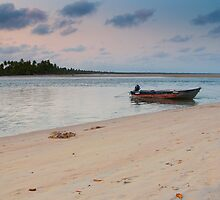Moored to the Island - Boipeba by lgphoto