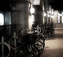 Bikes in the subway by Melinda Watson