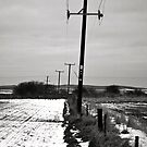 Pylons in the snow  by lendale