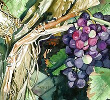 Grapes on the Vine by clotheslineart
