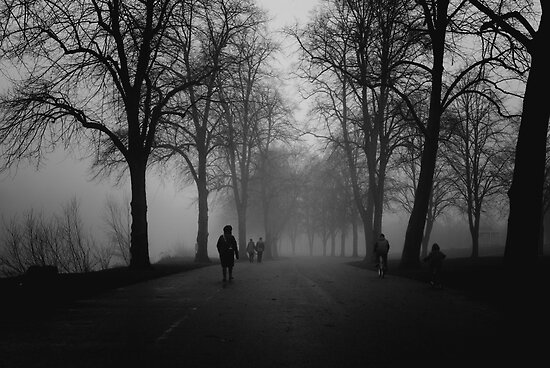 Morning walk in the Park by Matt Sillence