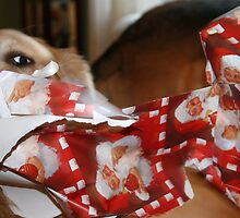 Our Automatic Unwrapper! by AliceMc