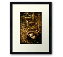 On Dry Land Framed Print