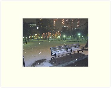 Boston Common by David Davies