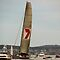 Wild Oats XI by Derwent-01