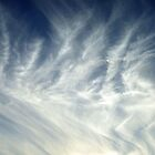 Feathery Clouds by Caren