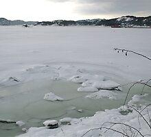 Seaice by Per Einar Einarsen