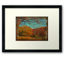 Burnt Autumn Framed Print