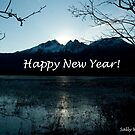 Happy New Year from Alaska by Sally Winter