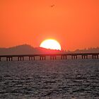Sunset in Astoria by tmtphotography