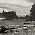 Ruby Beach - Oympic Peninsula Washington  ~ Black & White by Lucinda Walter