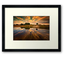 Starting 2011 - Dog Rocks Framed Print