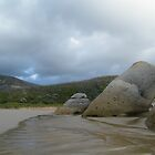 Rock Potatoes, Whisky Bay, Wilson's Promontory by DavisArk
