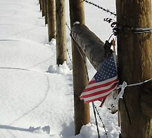The Patriotic Fence by Goudy