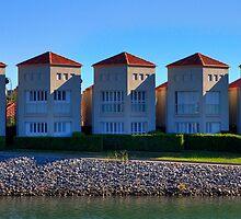 Five of a Kind   Settlement City   Port Macquarie   Australia by Bryan Freeman