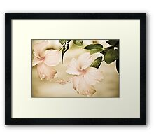 The Delicate Twin:Sold May17,2013: Explore Feb 22, 2011: Got Featured Work Framed Print